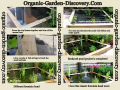 Plan a backyard garden landscape with low water plants gardening tips