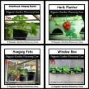 Container growing Strawberry plants can use plastic baskets; herb planter; window box; and re-usable containers.
