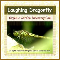 Our favourite dragonfly is laughing.
