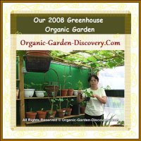 DIY organic gardening indoor´s and outdoor´s flowers, plants, and trees