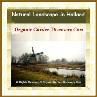 Beautiful natual garden landscape with windmill and water in Netherlands